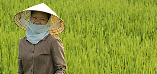 vietnamgirl