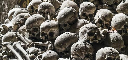 Human Skulls